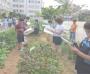 - 부산시 농업기술센터, 올 한해는 도시농업에 역점 -  코로나19로 지친 시민들 도시농업으로 치유한다!